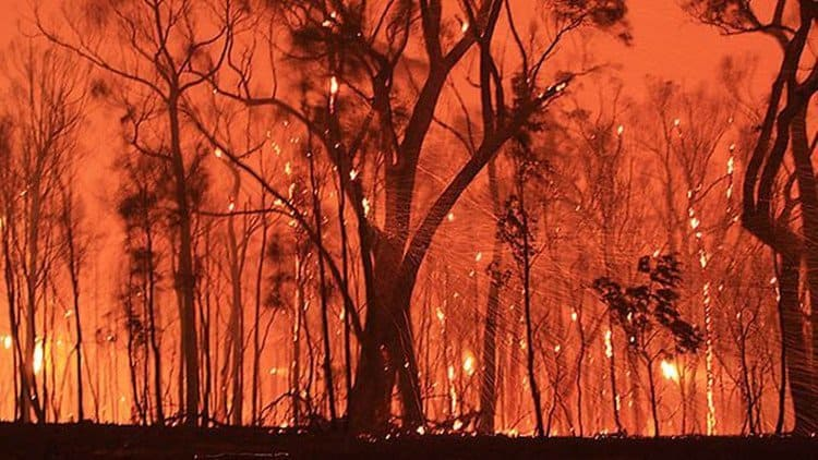 Avoid social media bushfire - Social media attack