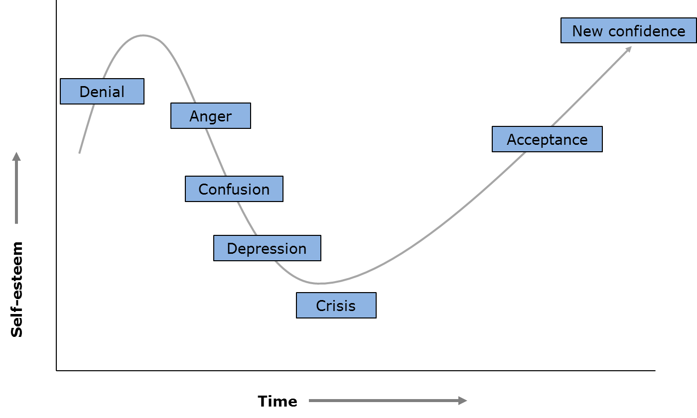 Change Management - Reactions to change - The Change Curve