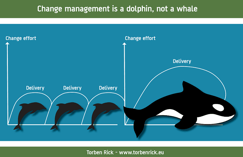 Change management is a dolphin, not a whale - What have dolphins and whales to do with change management?