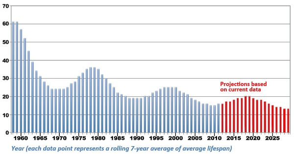 Average company lifespan on S&P 500 index