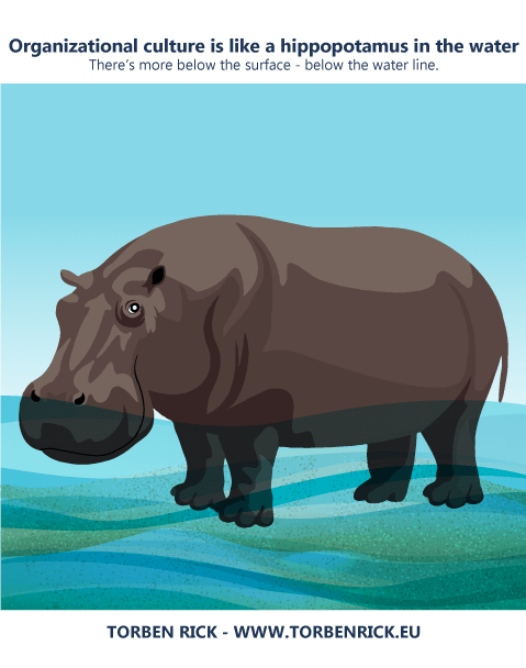 Organizational culture is like a hippopotamus in the water