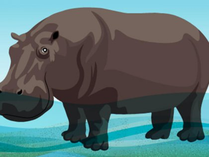 Organizational culture is like a hippopotamus or a message in a bottle